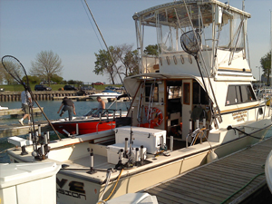 Charter boat massive confusion madeira beach johns for Madeira beach fishing charters
