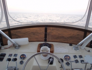 Flybridge Helm on the Massive Confusion